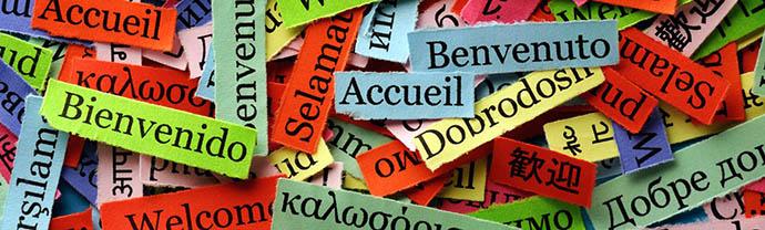 Jezikovni tečaj